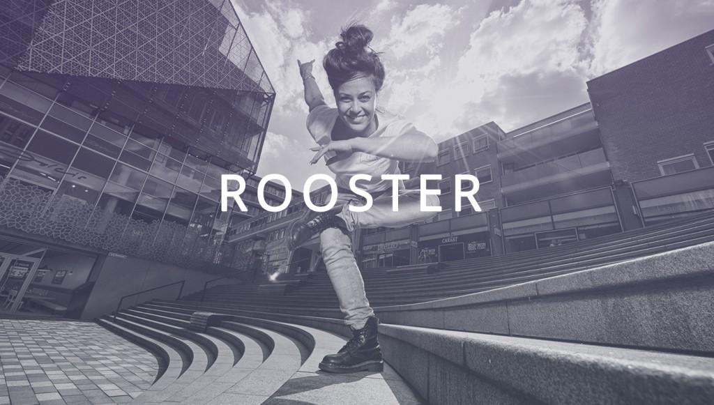 homelink_rooster_C